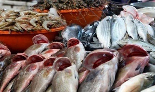 أسعار الأسماك في مصر اليوم 2020